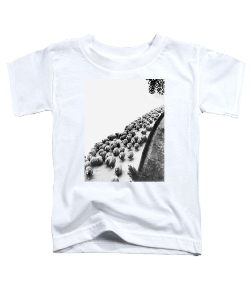 Hyde Park Sheep Flock Toddler T-Shirt by Underwood Archives