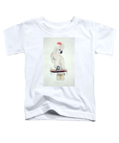 Salmon Crested Cockatoo Toddler T-Shirt by Edward Lear
