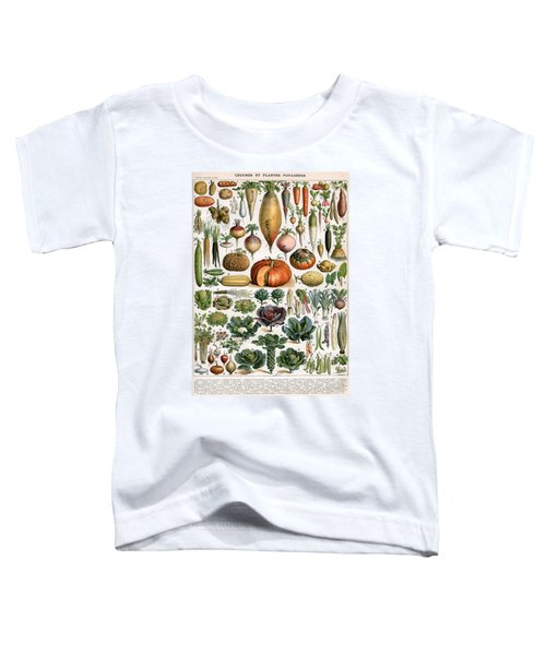 Illustration Of Vegetable Varieties Toddler T-Shirt by Alillot
