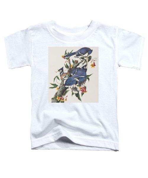 Blue Jay Toddler T-Shirt by John James Audubon