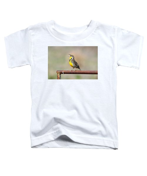 A Morning Song Toddler T-Shirt by Michael Morse