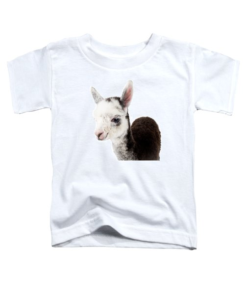 Adorable Baby Alpaca Cuteness Toddler T-Shirt by TC Morgan