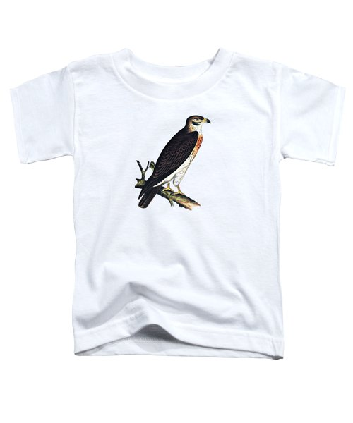 Hawk Swainsons Hawk Toddler T-Shirt by Movie Poster Prints