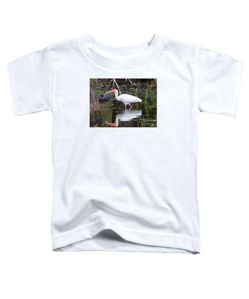 Ibis Drink Toddler T-Shirt by Mike Dawson
