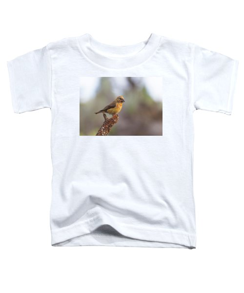 Juvenile Male Red Crossbill Toddler T-Shirt by Doug Lloyd