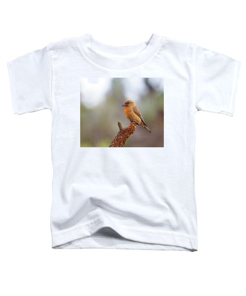 Male Red Crossbill Toddler T-Shirt by Doug Lloyd