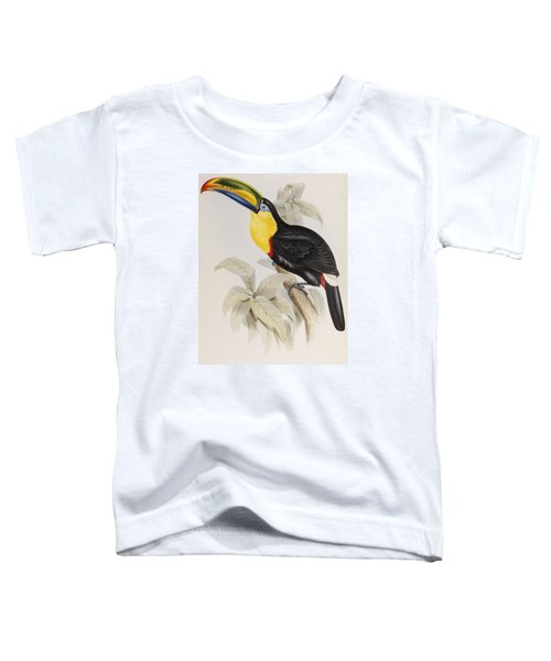 Toucan Toddler T-Shirt by John Gould