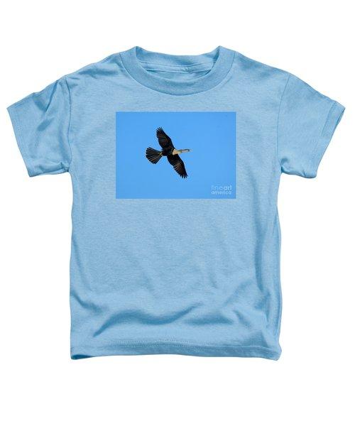 Anhinga Female Flying Toddler T-Shirt by Anthony Mercieca