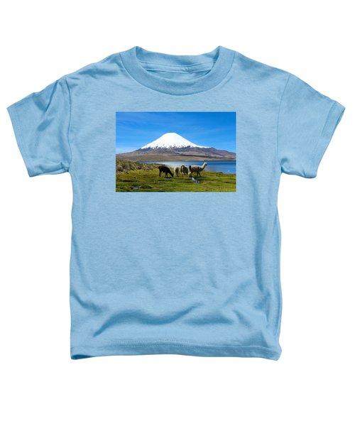 Parinacota Volcano Lake Chungara Chile Toddler T-Shirt by Kurt Van Wagner