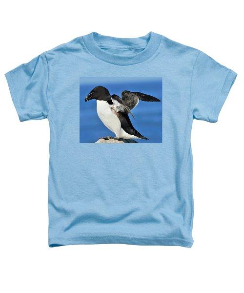 Razorbill Toddler T-Shirt by Tony Beck