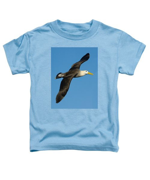 Waved Albatross Diomedea Irrorata Toddler T-Shirt by Panoramic Images