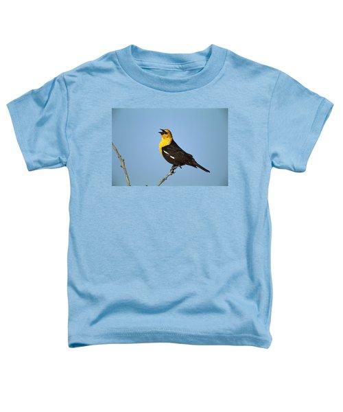 Yellow-headed Blackbird Singing Toddler T-Shirt by Tom Vezo