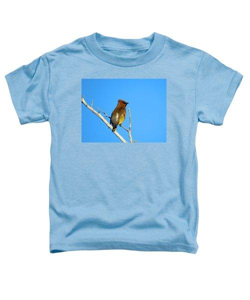 Cedar Waxwing Toddler T-Shirt by Dianne Cowen