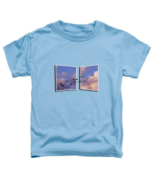Flying Across Toddler T-Shirt by Roger Wedegis