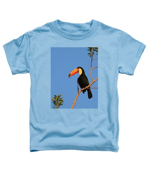 Toco Toucan Toddler T-Shirt by Bruce J Robinson
