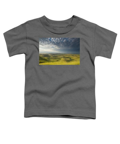 Killdeer Badlands In The East Block Of Toddler T-Shirt by Dave Reede