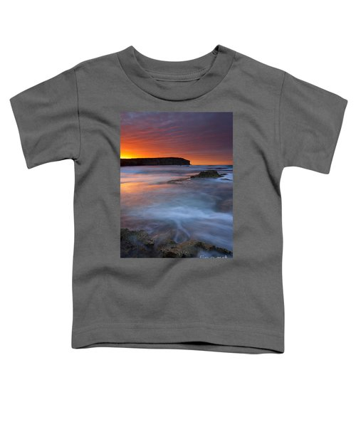 Pennington Dawn Toddler T-Shirt by Mike  Dawson