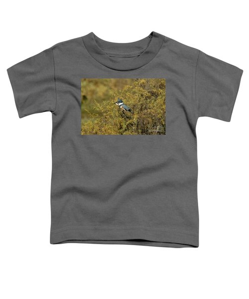Belted Kingfisher With Fish Toddler T-Shirt by Anthony Mercieca