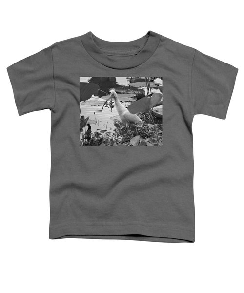 American White Ibis Black And White Toddler T-Shirt by Dan Sproul