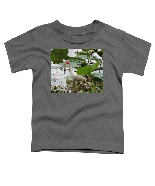 American White Ibis In Brazos Bend Toddler T-Shirt by Dan Sproul