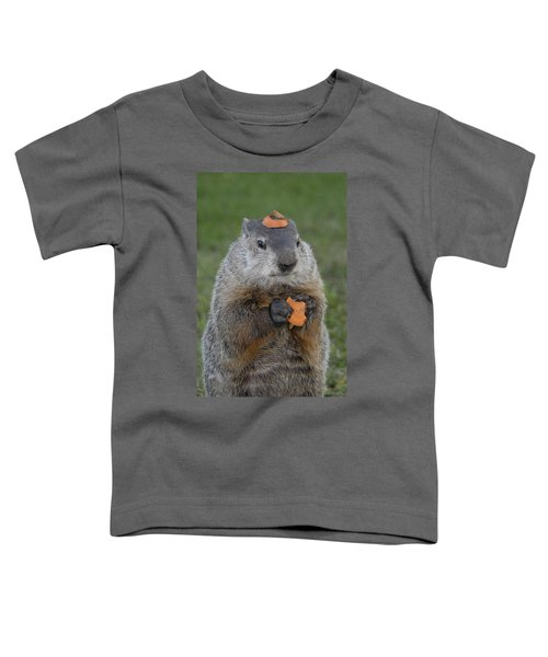 And Have You Looked In The Mirror Lately Toddler T-Shirt by Paul W Faust -  Impressions of Light