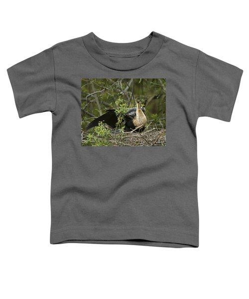 Anhinga Mama Toddler T-Shirt by Phill Doherty