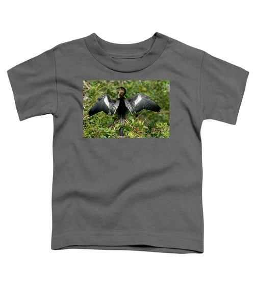 Anhinga Sunning Toddler T-Shirt by Anthony Mercieca