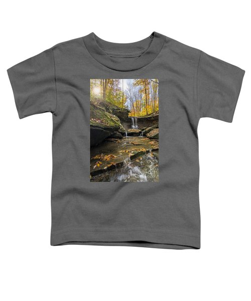 Autumn Flows Toddler T-Shirt by James Dean