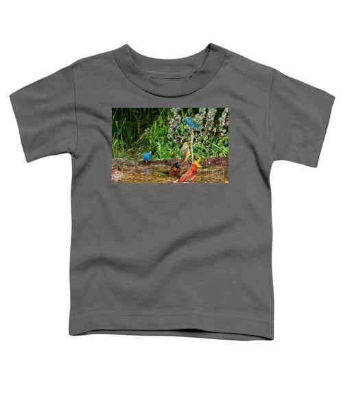 Birds Bathing Toddler T-Shirt by Anthony Mercieca