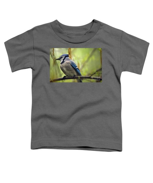 Blue Jay On A Misty Spring Day Toddler T-Shirt by Lois Bryan