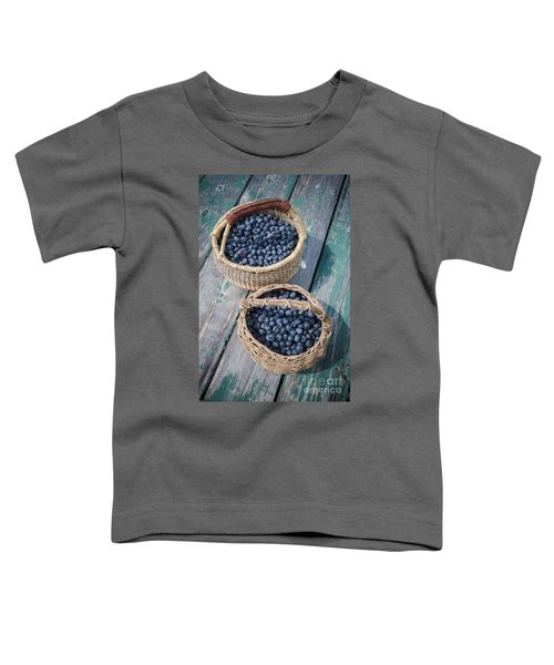 Blueberry Baskets Toddler T-Shirt by Edward Fielding
