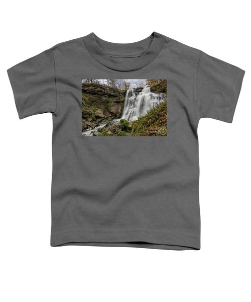 Brandywine Falls Toddler T-Shirt by James Dean