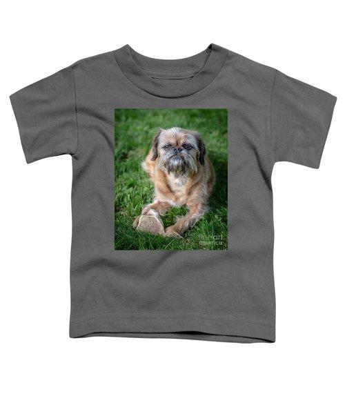 Brussels Griffon Toddler T-Shirt by Edward Fielding