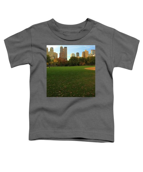 Central Park In Autumn Toddler T-Shirt by Dan Sproul