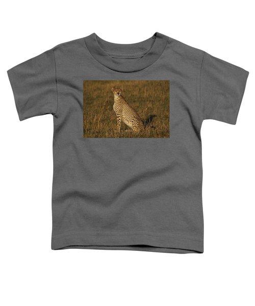 Cheetah On Savanna Masai Mara Kenya Toddler T-Shirt by Hiroya Minakuchi