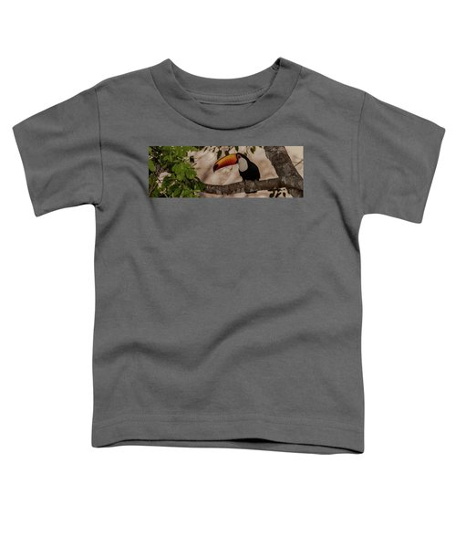 Close-up Of Tocu Toucan Ramphastos Toco Toddler T-Shirt by Panoramic Images