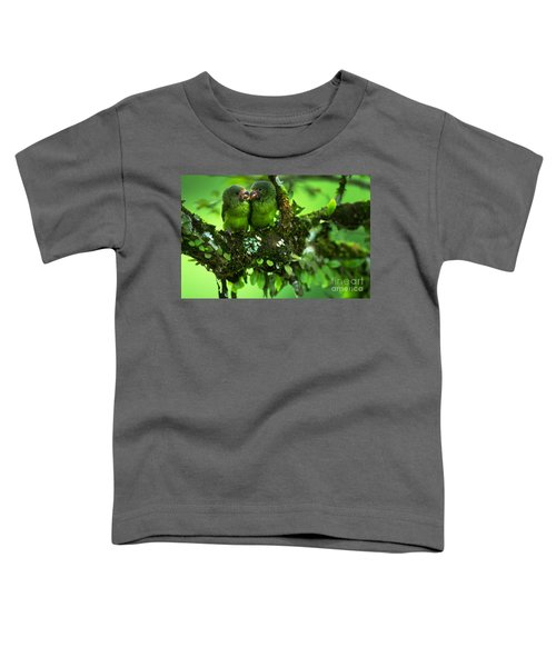 Cobalt-winged Parakeets Toddler T-Shirt by Art Wolfe