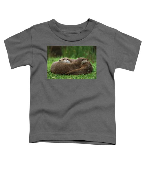 European River Otter Lutra Lutra Toddler T-Shirt by Ingo Arndt
