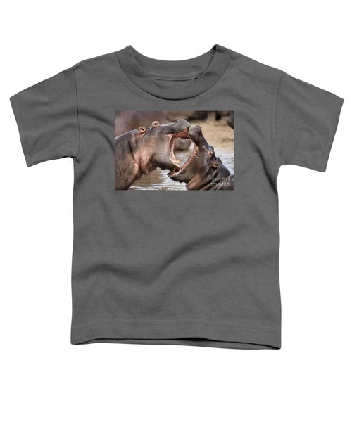 Fighting Hippos Toddler T-Shirt by Richard Garvey-Williams