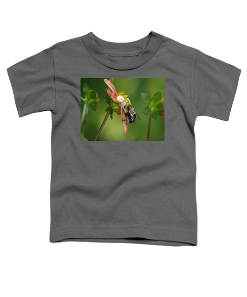 Goldenrod Spider Toddler T-Shirt by James Peterson