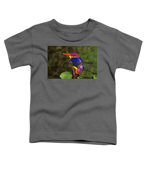 India Three Toed Kingfisher Toddler T-Shirt by Anonymous