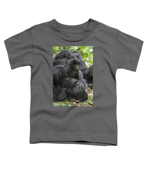 Mountain Gorilla Baby Playing Toddler T-Shirt by Suzi  Eszterhas