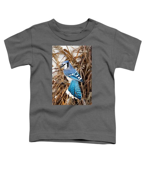 Portrait Of A Blue Jay Toddler T-Shirt by Bill Wakeley