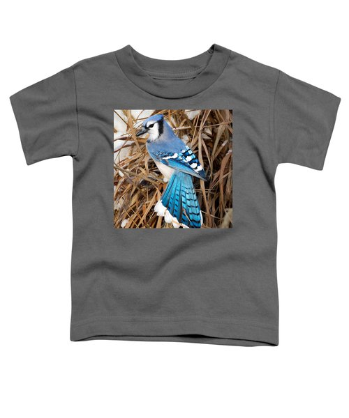 Portrait Of A Blue Jay Square Toddler T-Shirt by Bill Wakeley