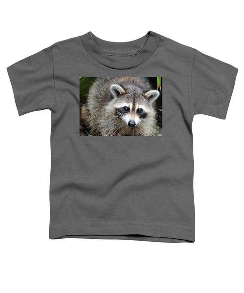 Raccoon Eyes Toddler T-Shirt by Carol Groenen