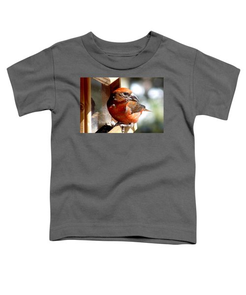 Red Crossbill Toddler T-Shirt by Marilyn Burton