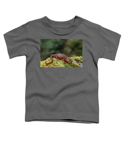 Rough-skinned Newt Oregon Toddler T-Shirt by Gerry Ellis