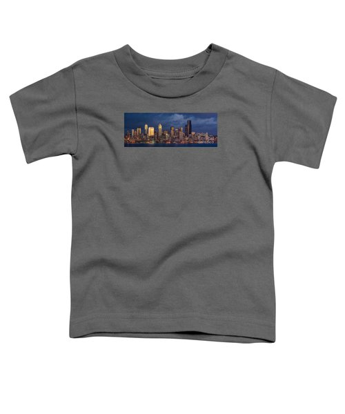Seattle Skyline Sunset Detail Toddler T-Shirt by Mike Reid