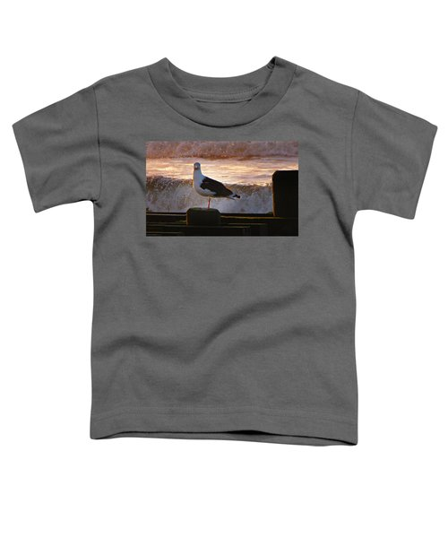 Sittin On The Dock Of The Bay Toddler T-Shirt by David Dehner