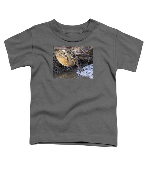 Streamside Woodcock Toddler T-Shirt by Timothy Flanigan